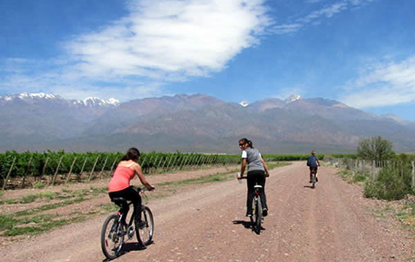 Mendoza Private Wine Bike Tour