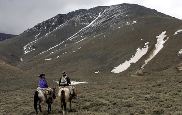 Mendoza Mountain Horse Riding Tour