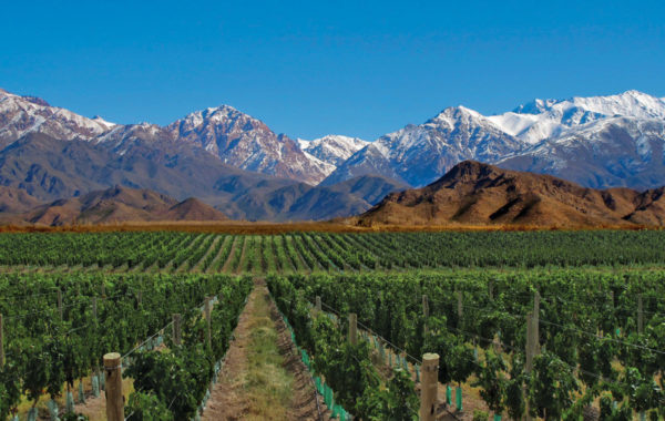 Mendoza 4 Days & 3 Nights Tour