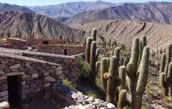 Humahuaca Private Tour